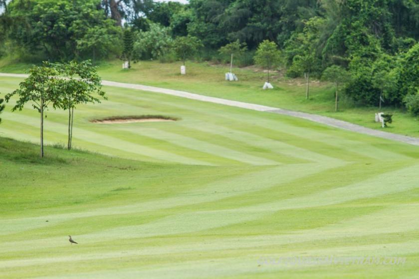 Vung Tau Paradise Golf5